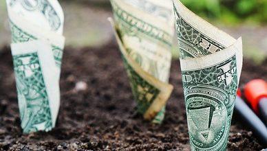3 aandelen voor de lange termijn